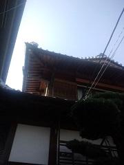 出し桁・化粧垂木・野垂木をあしらった屋根野地