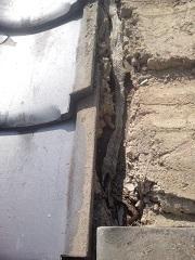 屋根の中の蛇の抜け殻