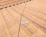 地瓦割れシリコン塗布型雨漏り