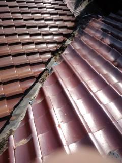 瓦屋根雨漏り修理診断