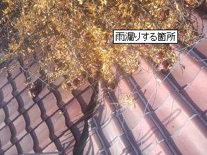 落ち葉堆積による雨漏り・大阪府堺市
