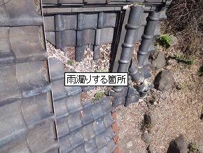 落ち葉堆積による雨漏り・大阪府