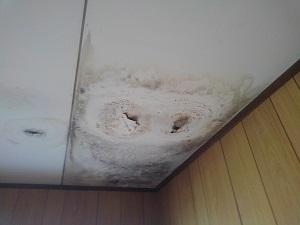 折半屋根雨漏りの調査(大阪府・高槻市にて)