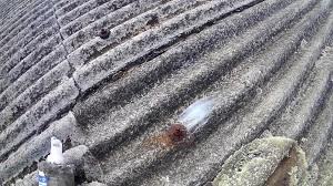 猪名川町での雨漏り修理調査