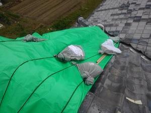 堺市の屋根修理調査(平屋建て)