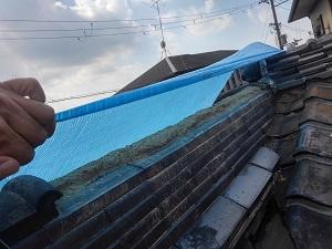 堺市の台風被害調査