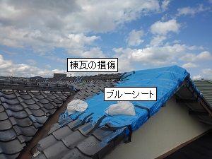 アドバイスとしての屋根調査