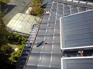 堺市での屋根修理調査