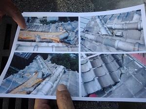 羽曳野市にて台風21号による風害調査