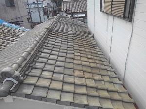 堺市堺区の雨漏り調査