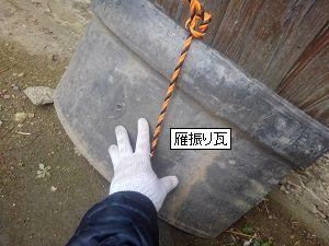貝塚市での台風被害調査