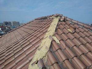 和泉市での台風21号の風害調査です