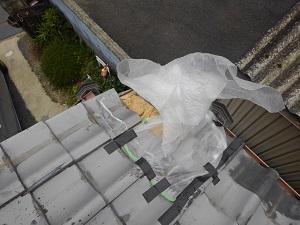 岸和田市での台風被害調査