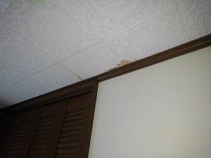 高槻市のスレート屋根雨漏り調査