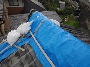 和泉市での瓦屋根雨漏り応急処置