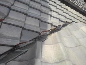 堺市南区での屋根修理調査