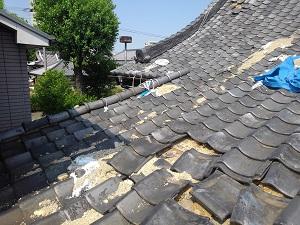 堺市の本堂瓦屋根修理調査
