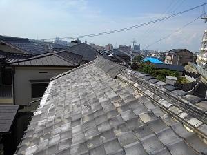 和泉市の雨漏り応急処置工事