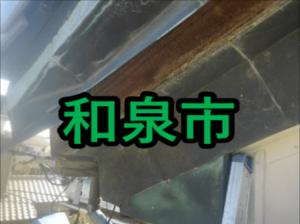 和泉市の雨漏り修理や屋根修理!愛の現場レポート!