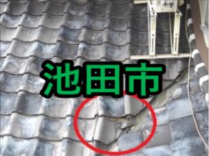 池田市の雨漏り修理や屋根修理!愛の現場レポート!
