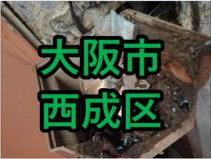 大阪市西成区の雨漏り修理や屋根修理!愛の現場レポート!