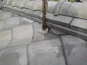 奈良県生駒市の瓦屋根修理調査 (2)