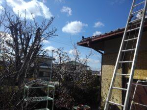 堺市の瓦屋根修理工事