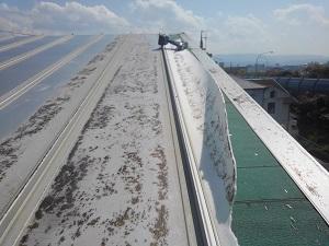 岸和田市の板金屋根修理工事