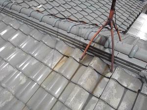 茨木市での瓦屋根雨漏り調査