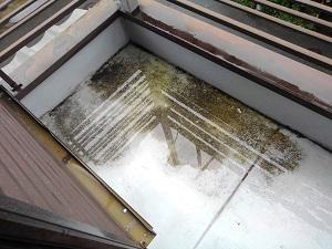 門真市の雨漏り修理調査